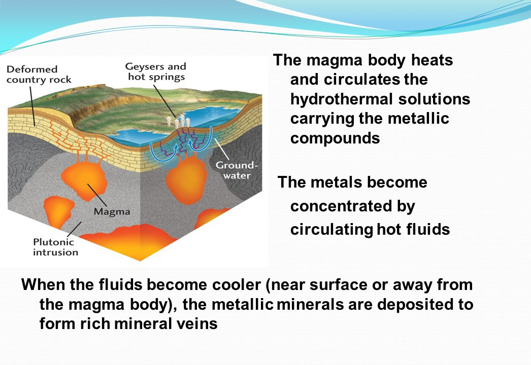 The magma body heats and circulates the hydrothermal solutions carrying the metallic compounds The metals become concentrated by circulating hot fluid
