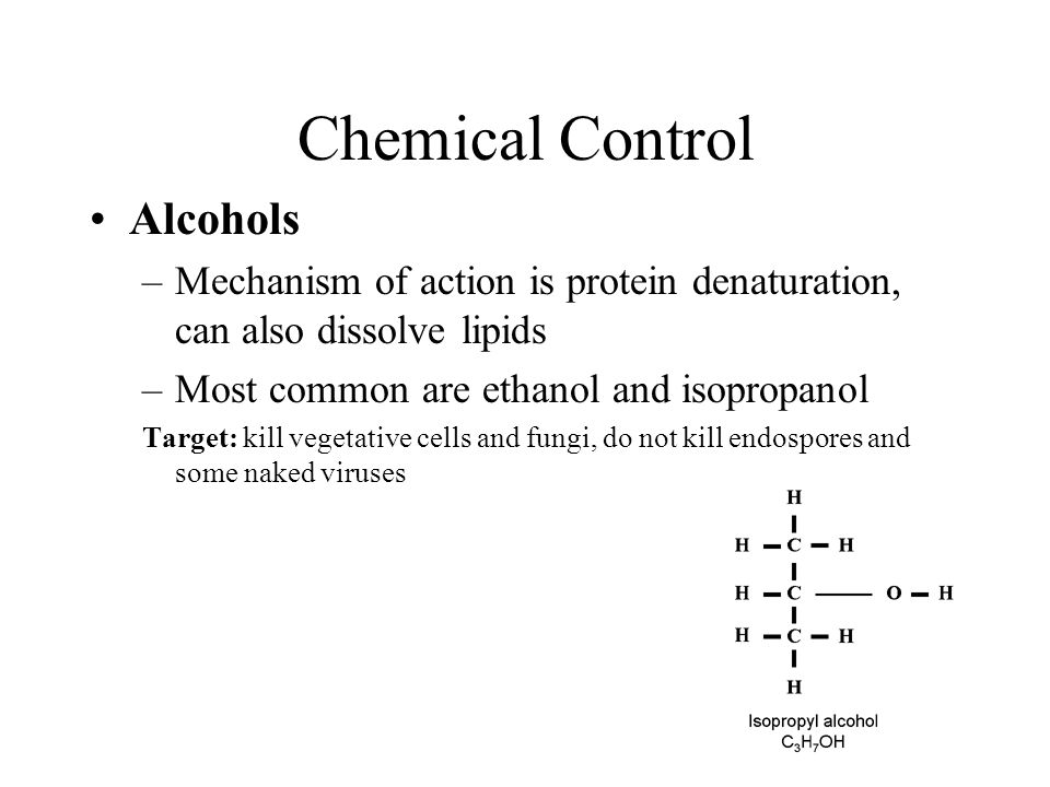 Chemical Control Alcohols –Mechanism of action is protein denaturation, can also dissolve lipids –Most common are ethanol and isopropanol Target: kill vegetative cells and fungi, do not kill endospores and some naked viruses