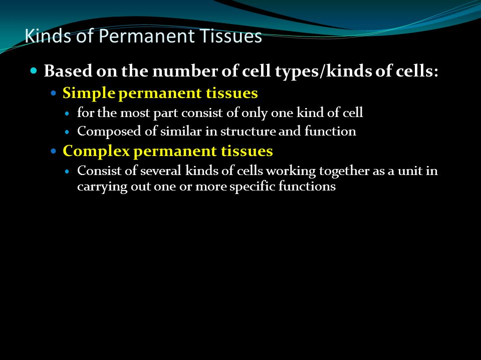Kinds of Meristems Based on origin, meristems may be classified as: Primary meristems Originate in the embryo and persist throughout the lifetime Apic