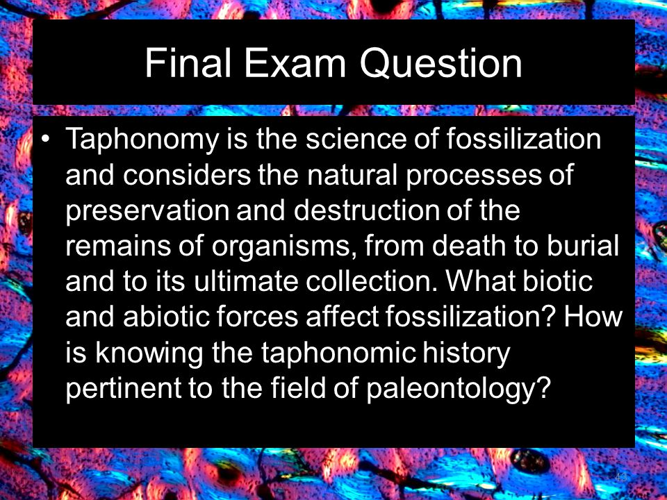 Final Exam Question Taphonomy is the science of fossilization and considers the natural processes of preservation and destruction of the remains of organisms, from death to burial and to its ultimate collection.