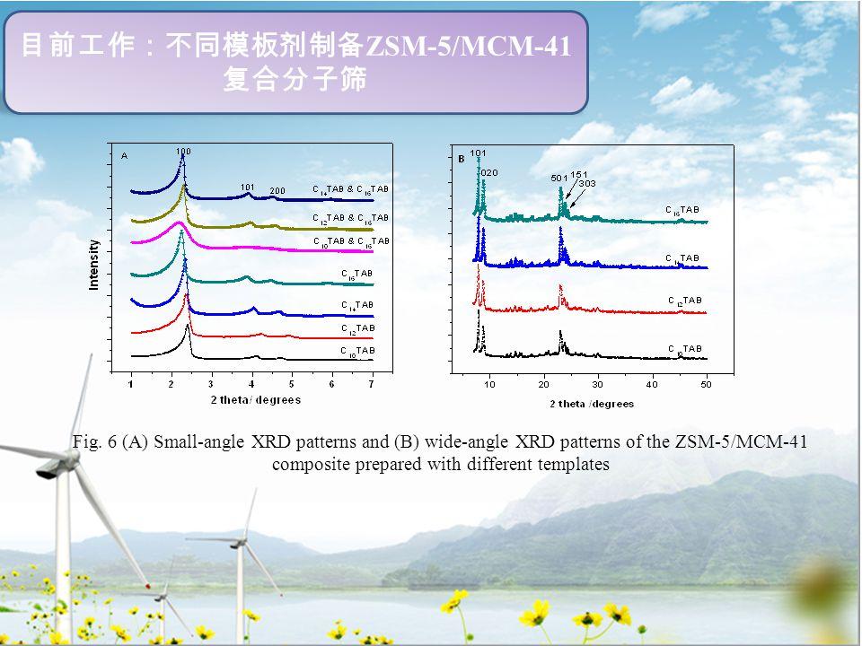 目前工作:不同模板剂制备 ZSM-5/MCM-41 复合分子筛 Fig.