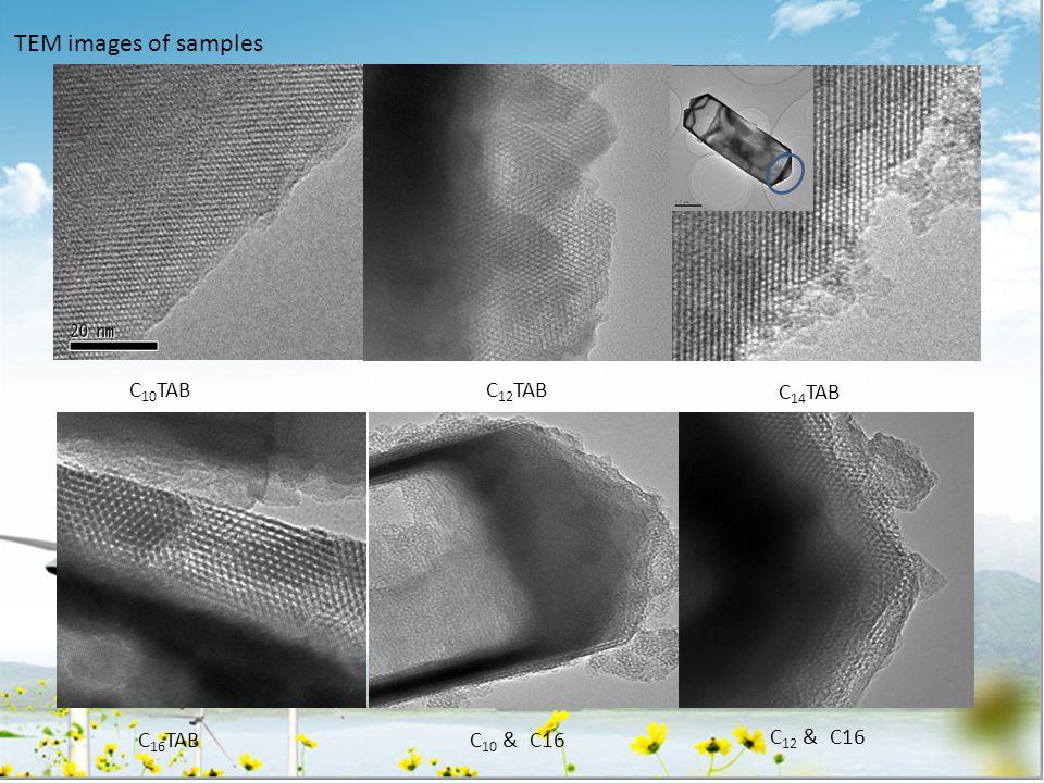 TEM images of samples C 16 TAB C 10 TABC 12 TAB C 14 TAB C 10 & C16 C 12 & C16
