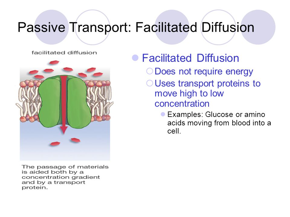 Passive Transport: Facilitated Diffusion Facilitated Diffusion  Does not require energy  Uses transport proteins to move high to low concentration E