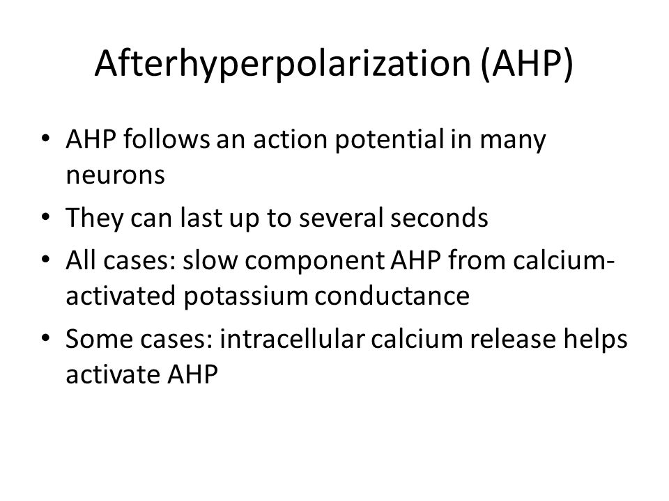 Afterhyperpolarization (AHP) AHP follows an action potential in many neurons They can last up to several seconds All cases: slow component AHP from calcium- activated potassium conductance Some cases: intracellular calcium release helps activate AHP