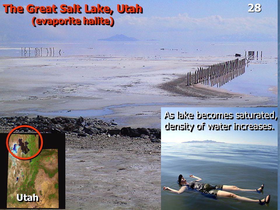 The Great Salt Lake, Utah (evaporite halite) The Great Salt Lake, Utah (evaporite halite) UtahUtah As lake becomes saturated, density of water increas