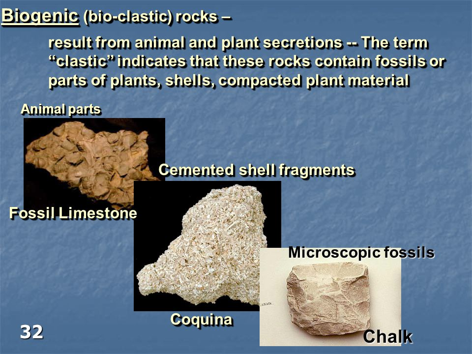 """Biogenic (bio-clastic) rocks – result from animal and plant secretions -- The term """"clastic"""" indicates that these rocks contain fossils or parts of pl"""