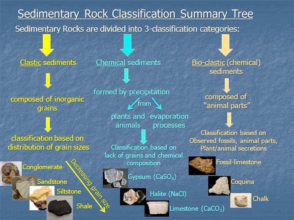 Sedimentary Rock Classification Summary Tree Sedimentary Rocks are divided into 3-classification categories: Clastic sediments Chemical sediments Bio-