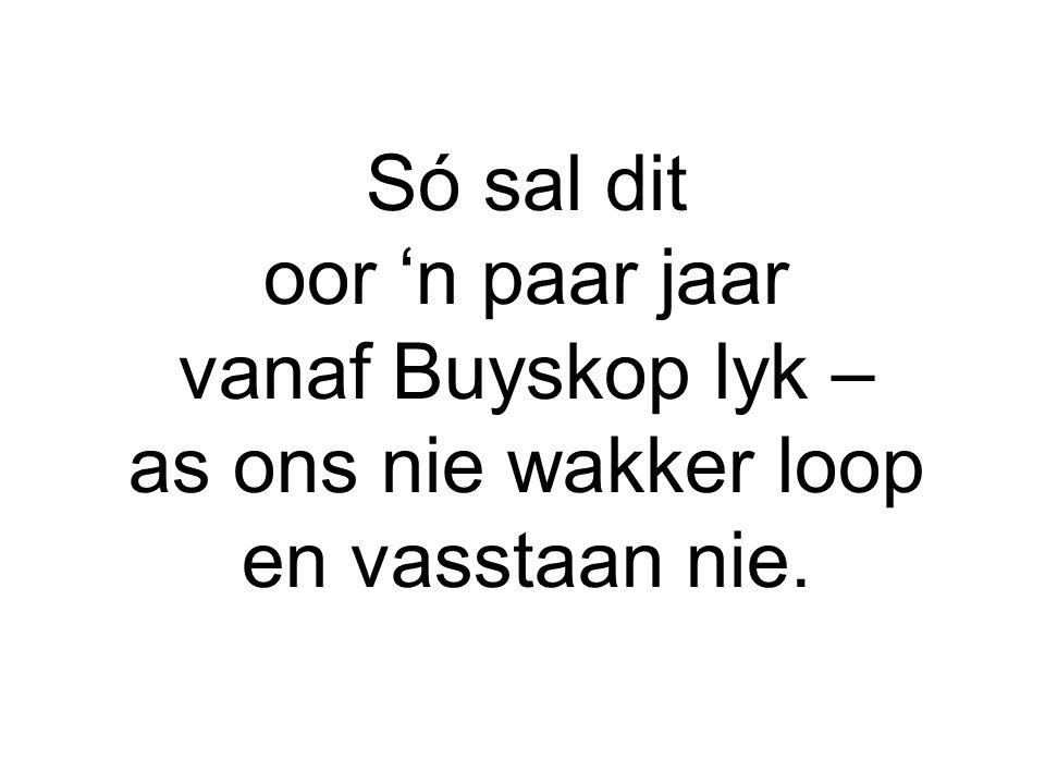 Só sal dit oor 'n paar jaar vanaf Buyskop lyk – as ons nie wakker loop en vasstaan nie.
