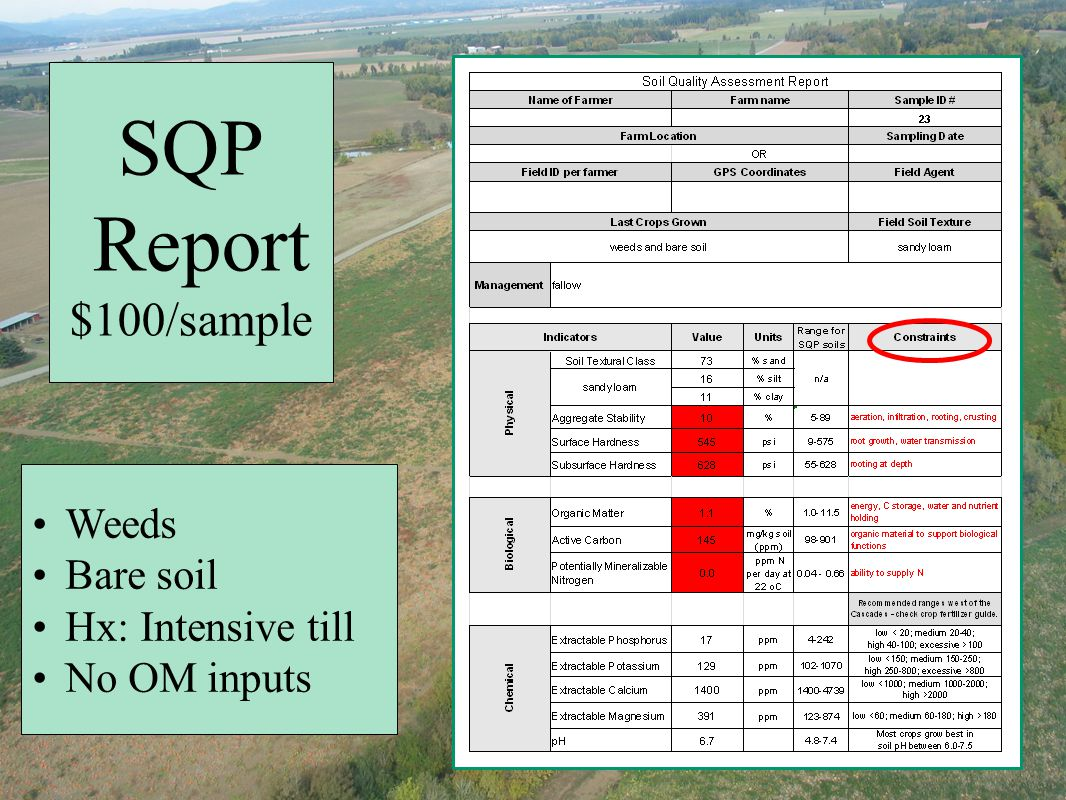 SQP Report $100/sample Weeds Bare soil Hx: Intensive till No OM inputs