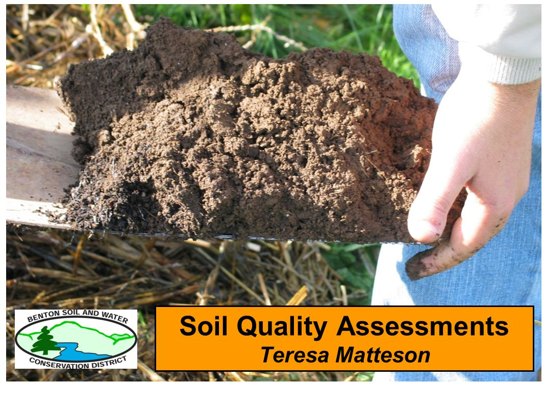 Soil Quality Assessments Teresa Matteson