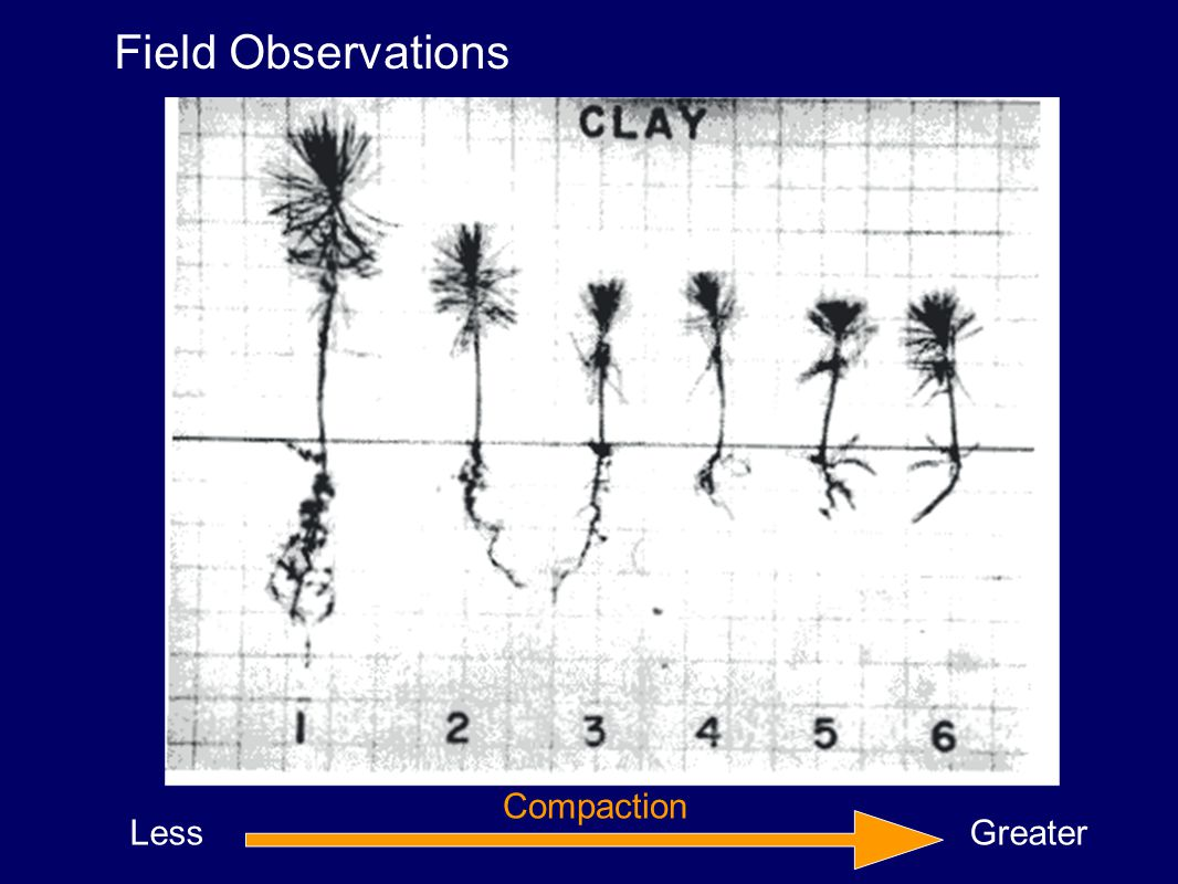 Less Greater Compaction Field Observations
