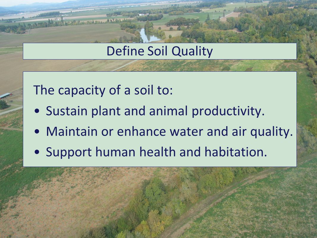 The capacity of a soil to: Sustain plant and animal productivity.