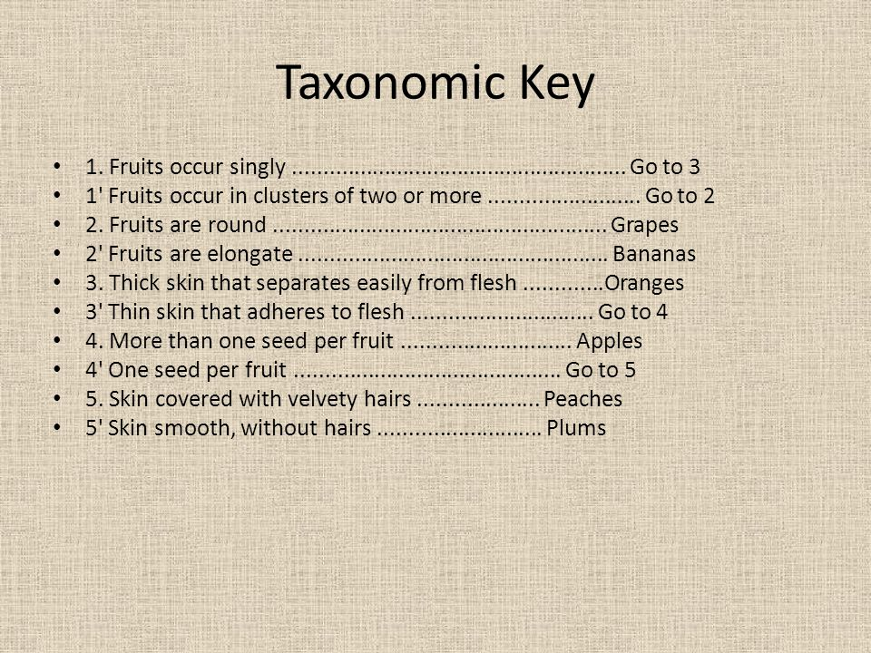 Taxonomic Key 1. Fruits occur singly....................................................... Go to 3 1' Fruits occur in clusters of two or more........