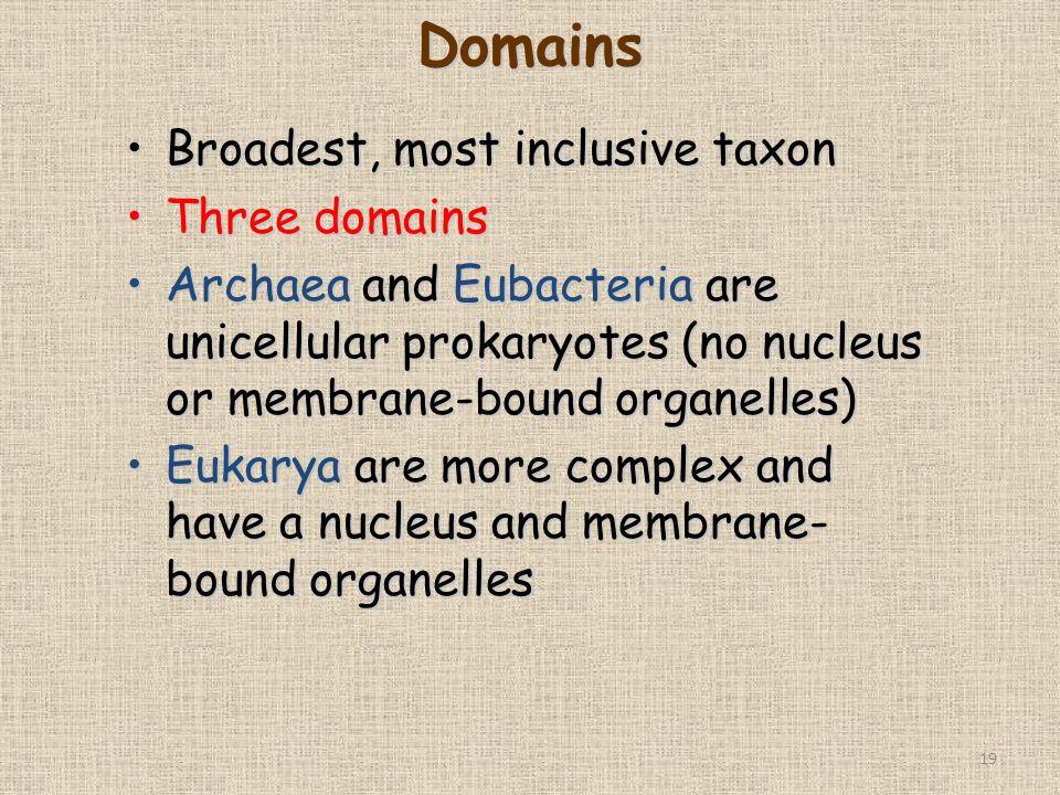 19 Broadest, most inclusive taxonBroadest, most inclusive taxon Three domainsThree domains Archaea and Eubacteria are unicellular prokaryotes (no nucl