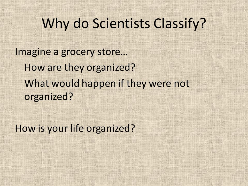 Why do Scientists Classify? Imagine a grocery store… How are they organized? What would happen if they were not organized? How is your life organized?