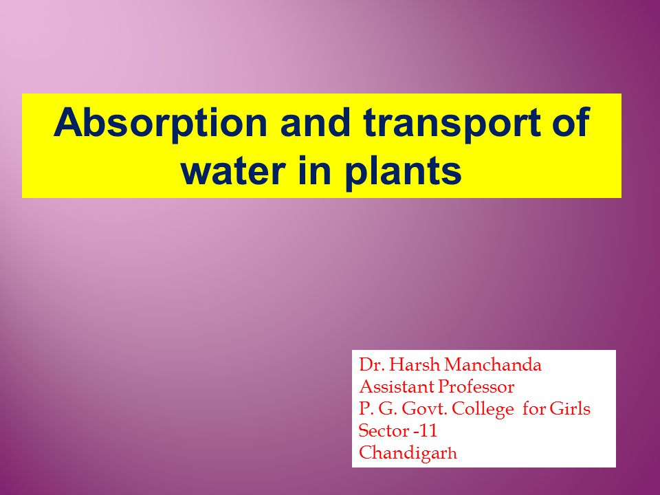 Absorption and transport of water in plants Dr. Harsh Manchanda Assistant Professor P. G. Govt. College for Girls Sector -11 Chandigar h
