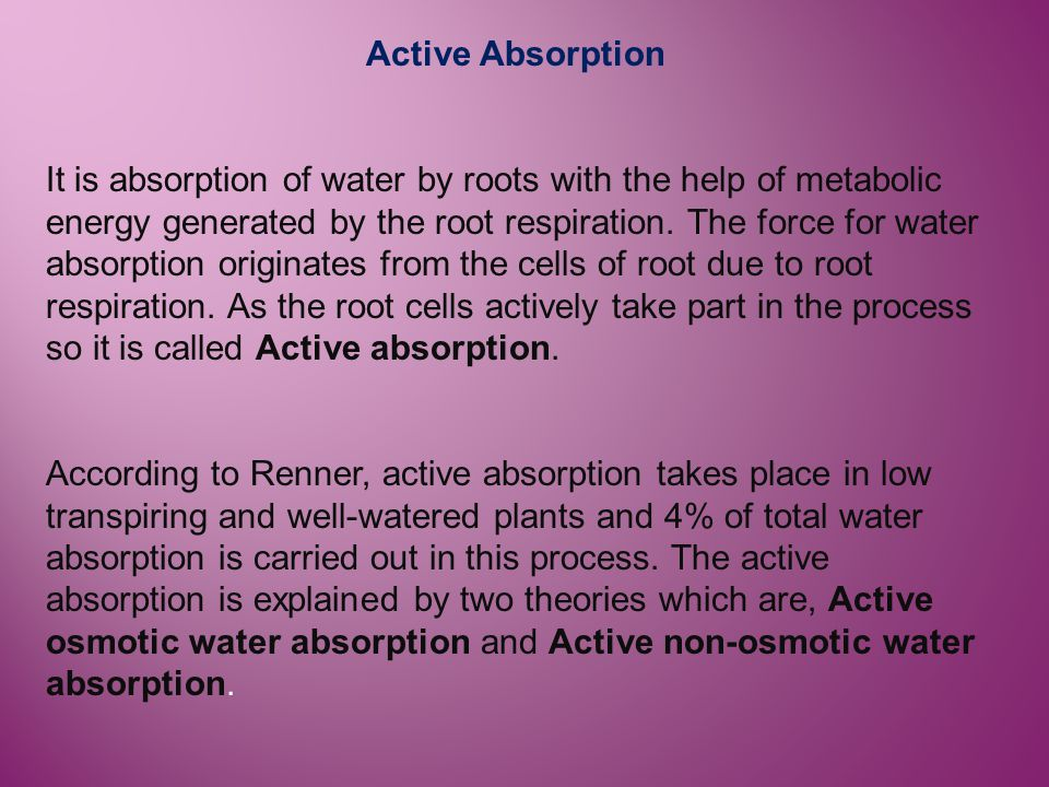 Active Absorption It is absorption of water by roots with the help of metabolic energy generated by the root respiration. The force for water absorpti
