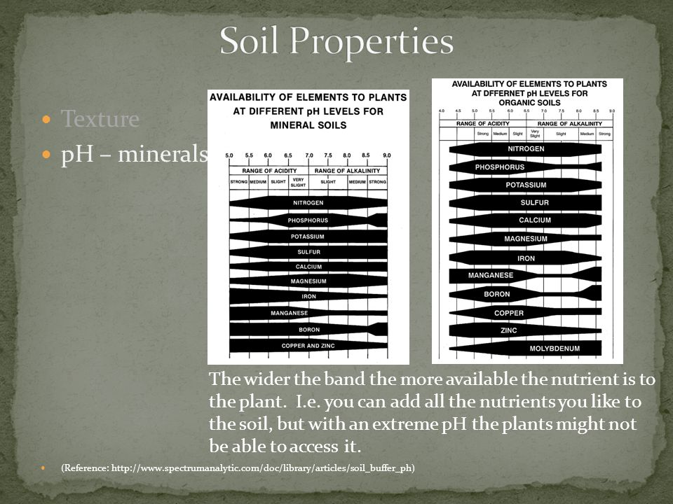 Texture pH – minerals (Reference: http://www.spectrumanalytic.com/doc/library/articles/soil_buffer_ph) The wider the band the more available the nutri