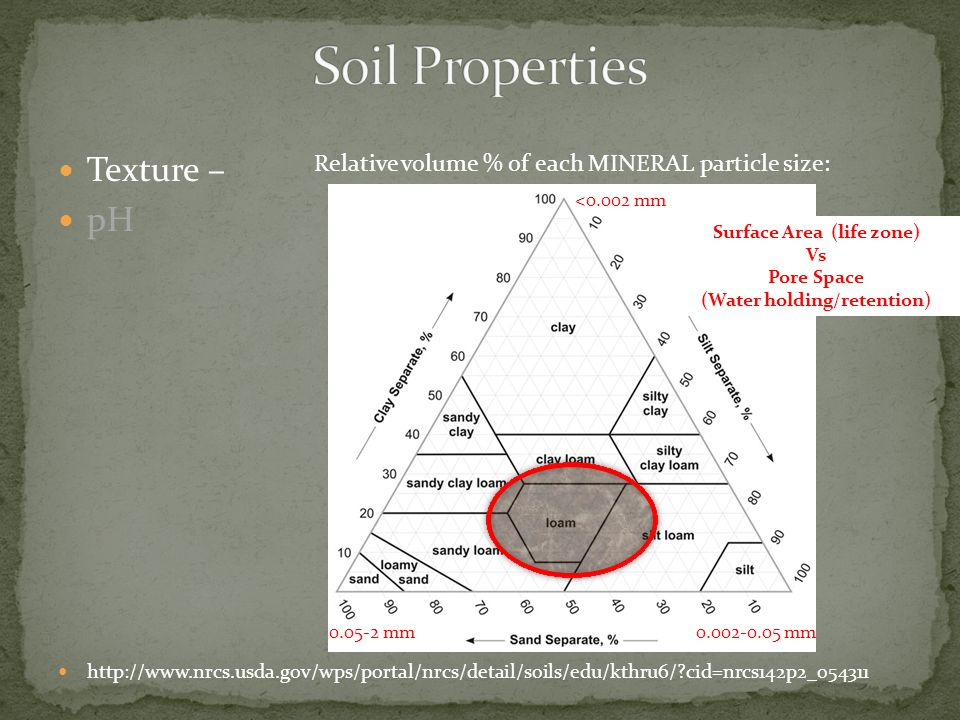 Texture – pH http://www.nrcs.usda.gov/wps/portal/nrcs/detail/soils/edu/kthru6/?cid=nrcs142p2_054311 Relative volume % of each MINERAL particle size: <0.002 mm 0.002-0.05 mm0.05-2 mm Surface Area (life zone) Vs Pore Space (Water holding/retention)