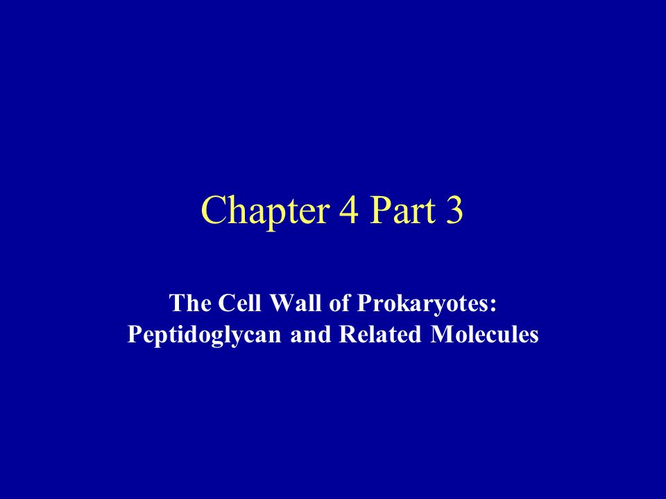 Chapter 4 Part 3 The Cell Wall of Prokaryotes: Peptidoglycan and Related Molecules