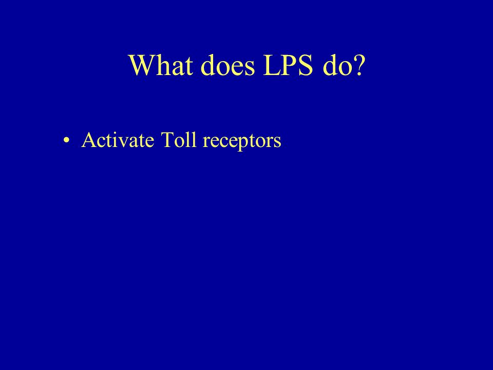 What does LPS do? Activate Toll receptors