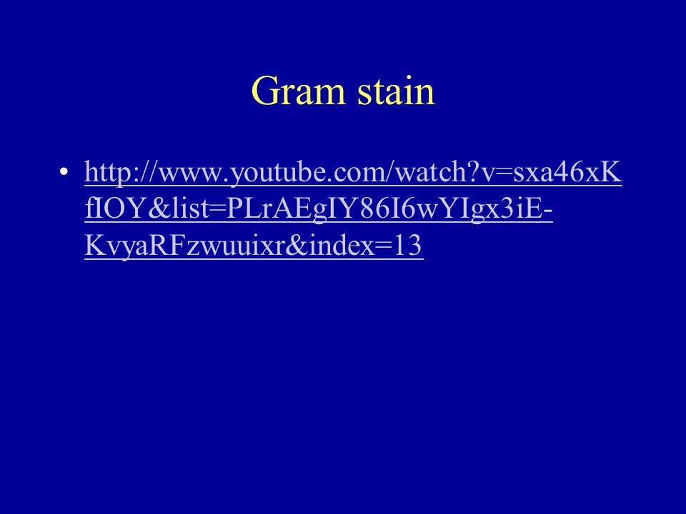 Gram stain http://www.youtube.com/watch v=sxa46xK fIOY&list=PLrAEgIY86I6wYIgx3iE- KvyaRFzwuuixr&index=13http://www.youtube.com/watch v=sxa46xK fIOY&list=PLrAEgIY86I6wYIgx3iE- KvyaRFzwuuixr&index=13
