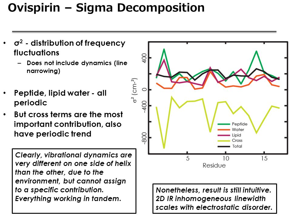 Ovispirin – Sigma Decomposition σ 2 - distribution of frequency fluctuations – Does not include dynamics (line narrowing) Peptide, lipid water - all p