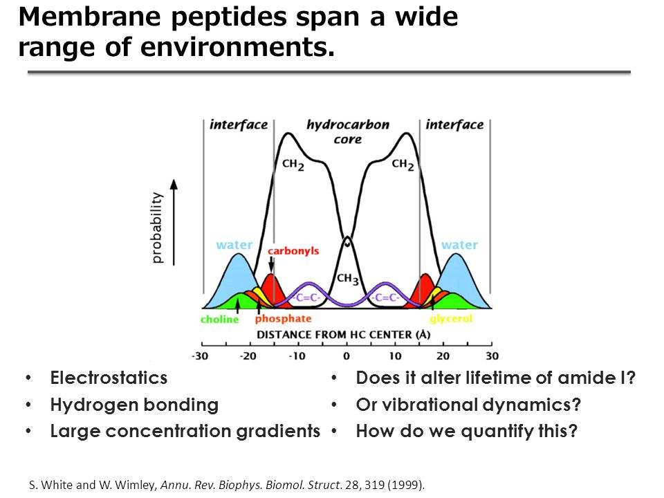 Membrane peptides span a wide range of environments.
