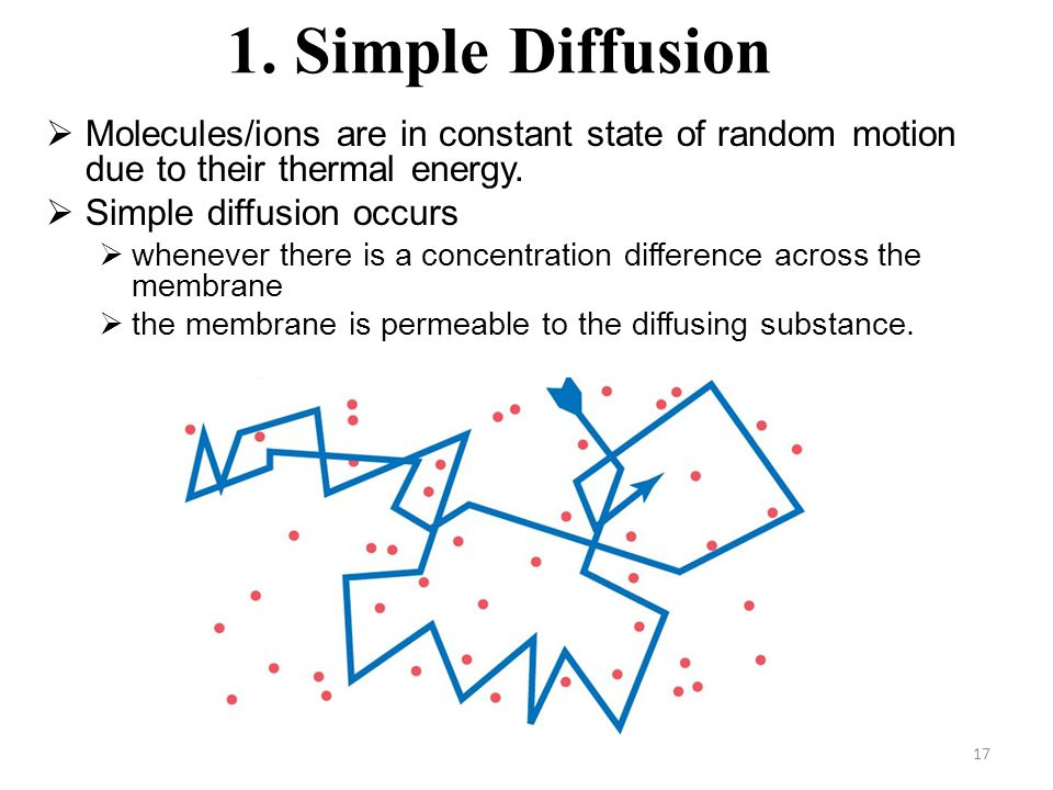 17 1. Simple Diffusion  Molecules/ions are in constant state of random motion due to their thermal energy.  Simple diffusion occurs  whenever there