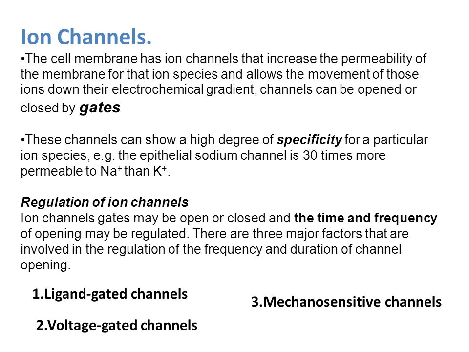 Ion Channels. The cell membrane has ion channels that increase the permeability of the membrane for that ion species and allows the movement of those