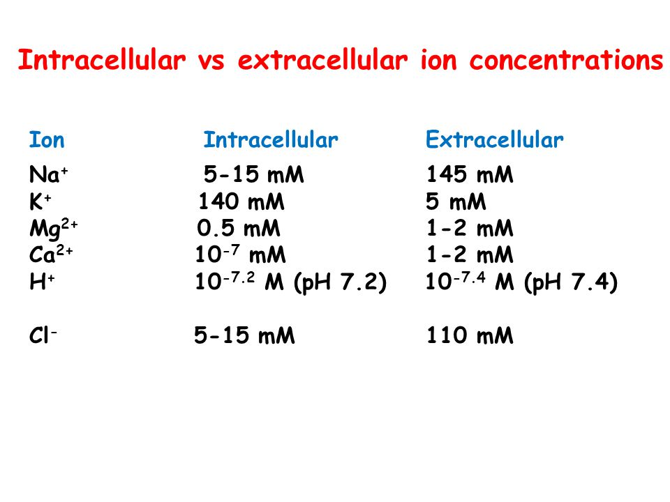 Intracellular vs extracellular ion concentrations Ion Intracellular Extracellular Na + 5-15 mM 145 mM K + 140 mM 5 mM Mg 2+ 0.5 mM 1-2 mM Ca 2+ 10 -7
