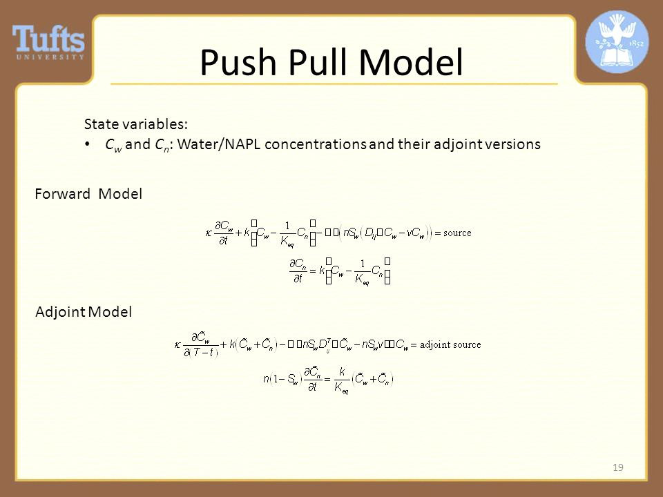 Push Pull Model 19 Forward Model Adjoint Model State variables: C w and C n : Water/NAPL concentrations and their adjoint versions