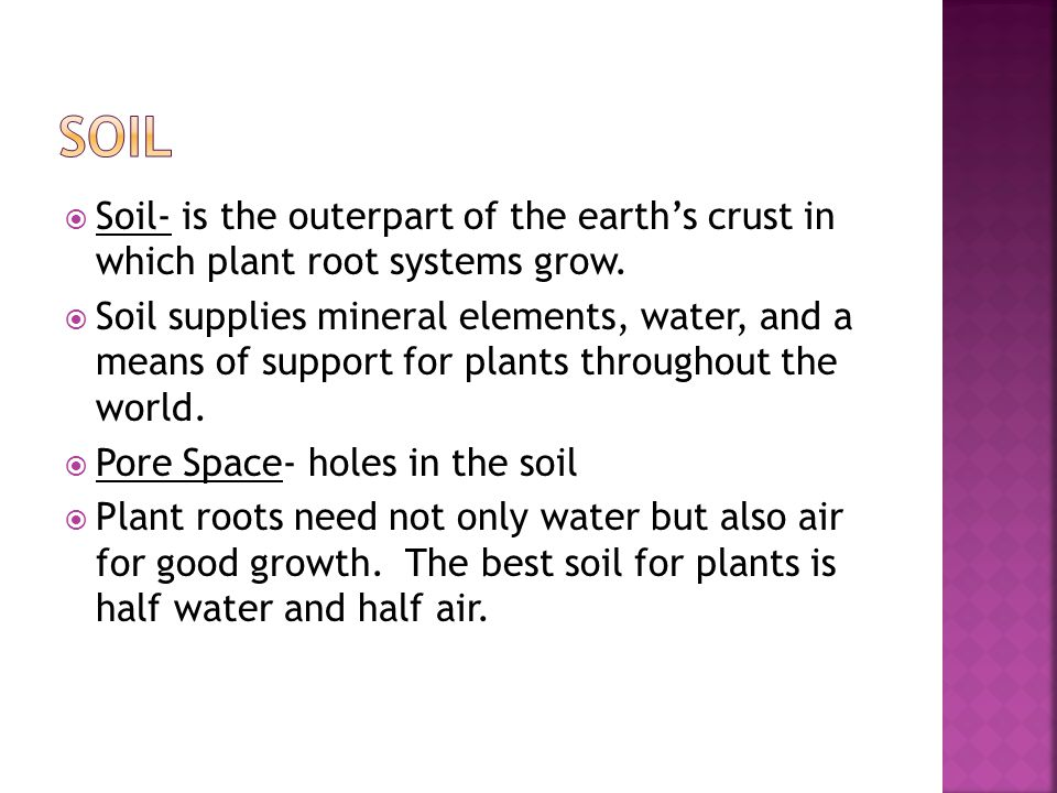  Soil- is the outerpart of the earth's crust in which plant root systems grow.  Soil supplies mineral elements, water, and a means of support for pl