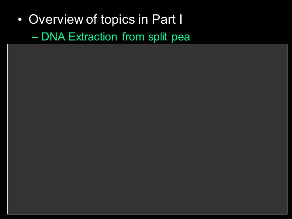 Overview of topics in Part I –DNA Extraction from split pea –Discovery of DNA –DNA's Structure –Nucleotides –Building a DNA model –DNA replication –Cell Division –Chromosomes –Phases of Mitosis