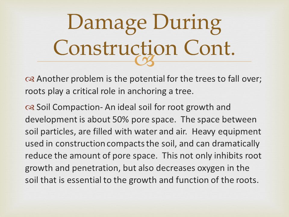   This info has been developed by the International Society of Arboriculture, a non-profit organization supporting tree care research around the world and dedicated to the care and preservation of shade and ornamental trees.