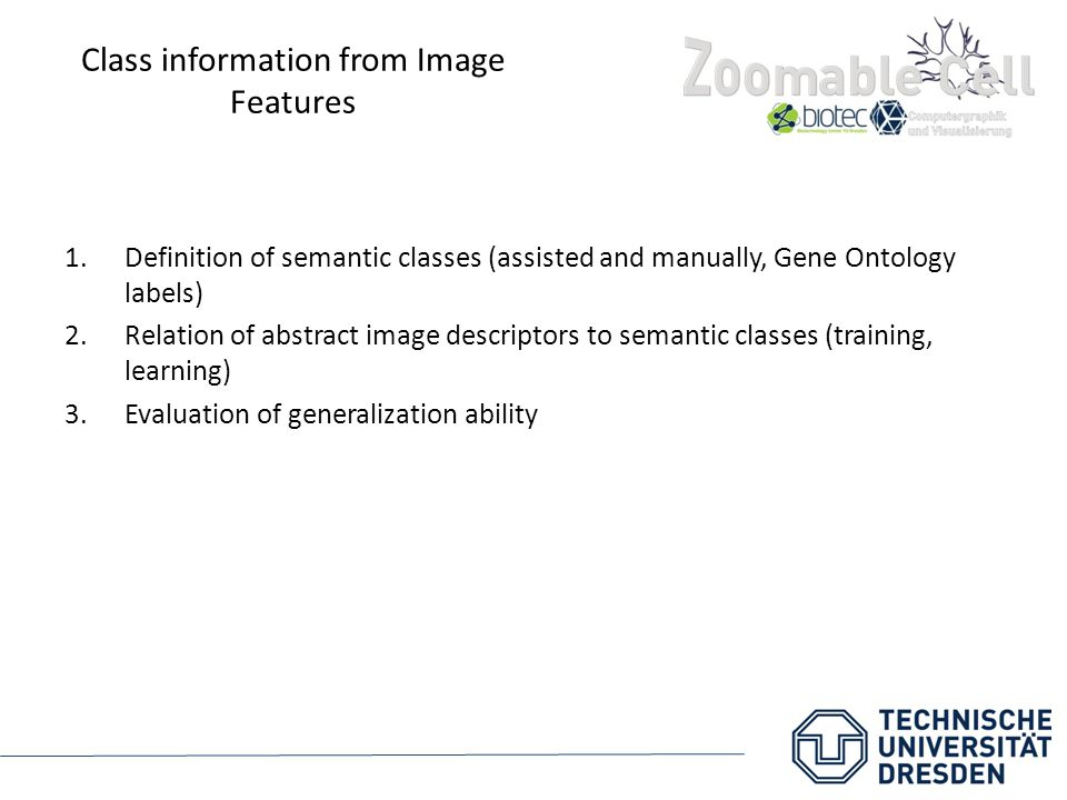 Class information from Image Features 1.Definition of semantic classes (assisted and manually, Gene Ontology labels) 2.Relation of abstract image desc