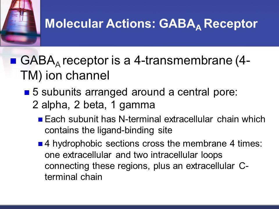 Molecular Actions: GABA A Receptor GABA A receptor is a 4-transmembrane (4- TM) ion channel 5 subunits arranged around a central pore: 2 alpha, 2 beta