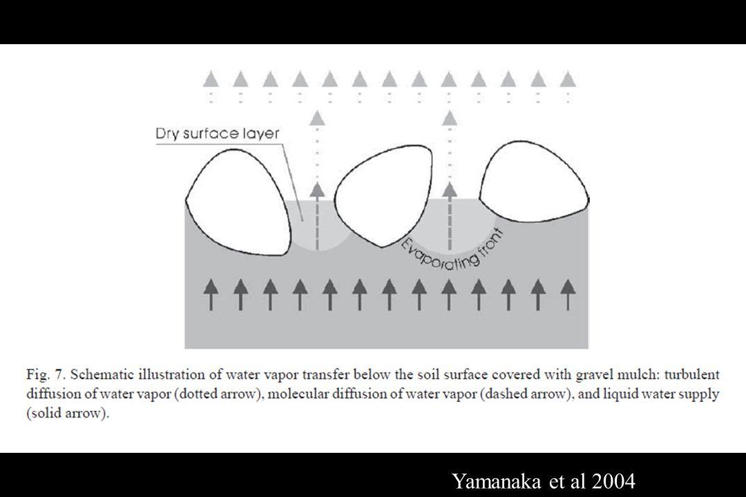Yamanaka et al 2004