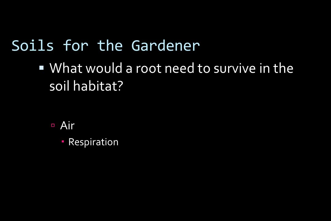 Soils for the Gardener  What would a root need to survive in the soil habitat  Air  Respiration