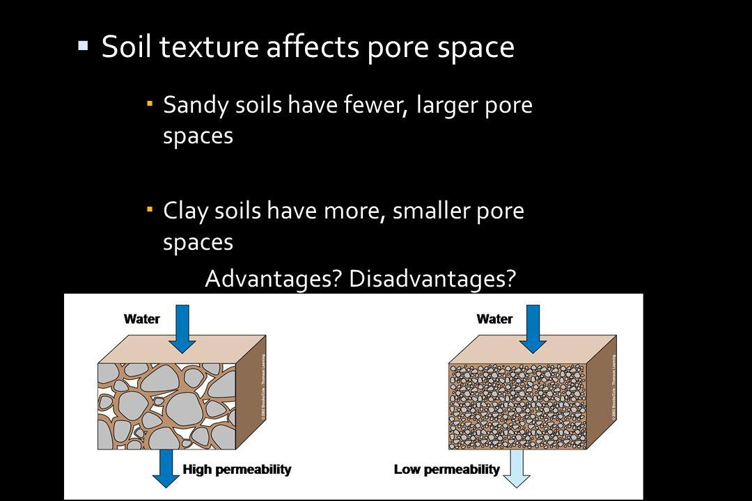  Soil texture affects pore space  Sandy soils have fewer, larger pore spaces  Clay soils have more, smaller pore spaces Advantages.