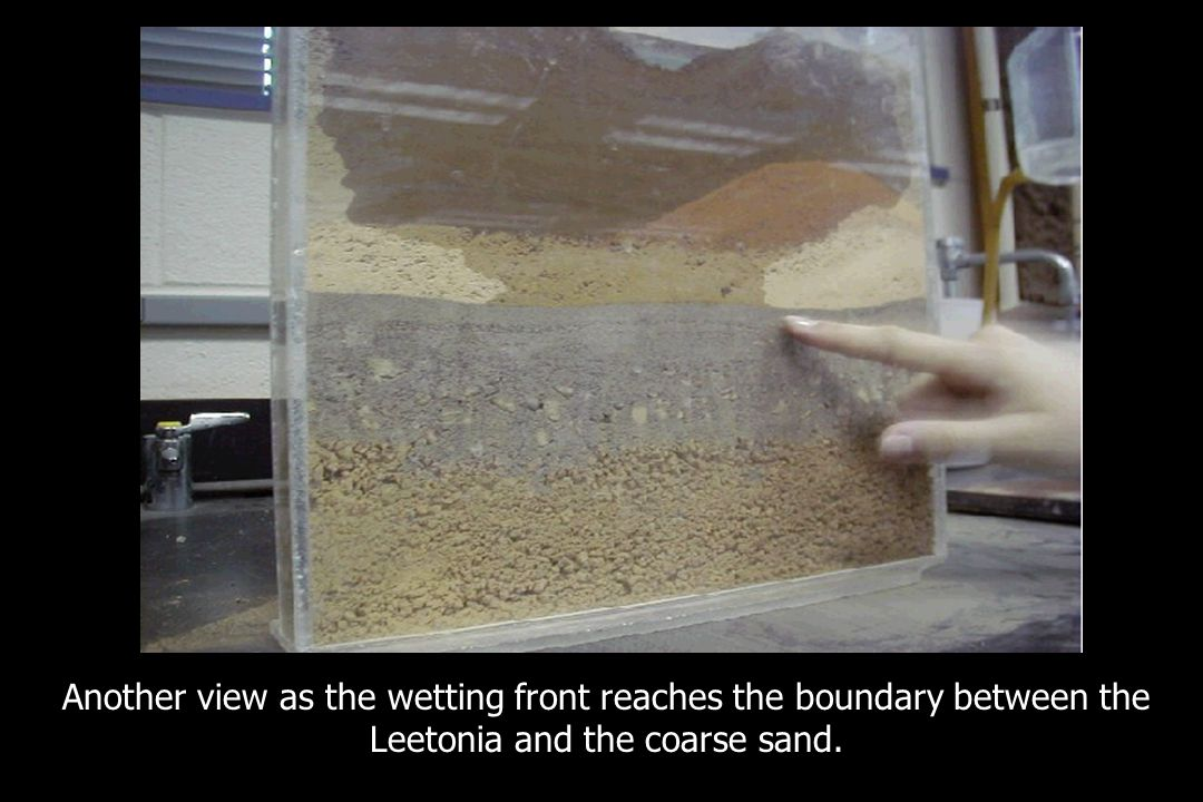 Another view as the wetting front reaches the boundary between the Leetonia and the coarse sand.