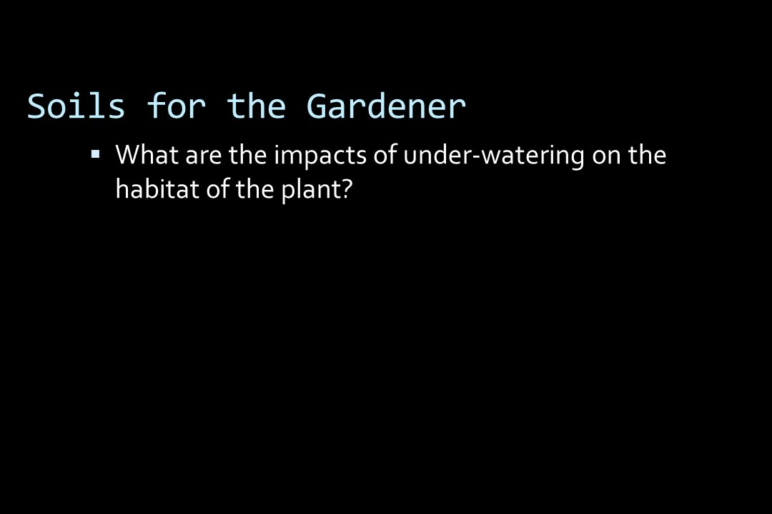Soils for the Gardener  What are the impacts of under-watering on the habitat of the plant