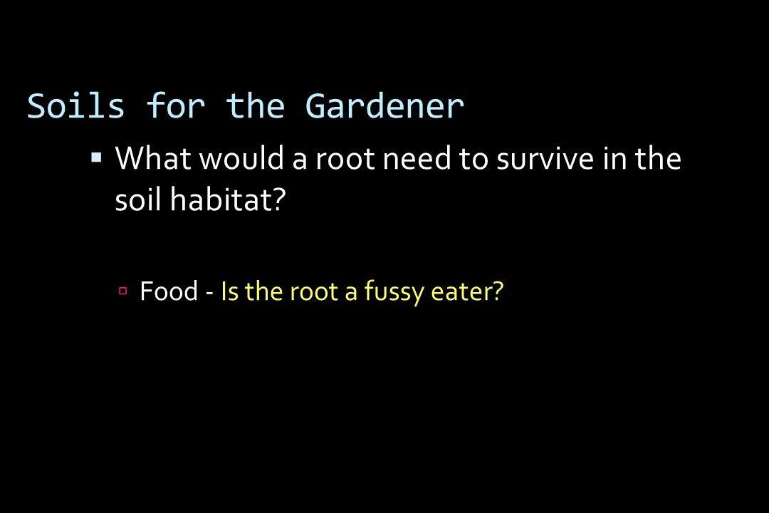 Soils for the Gardener  What would a root need to survive in the soil habitat.