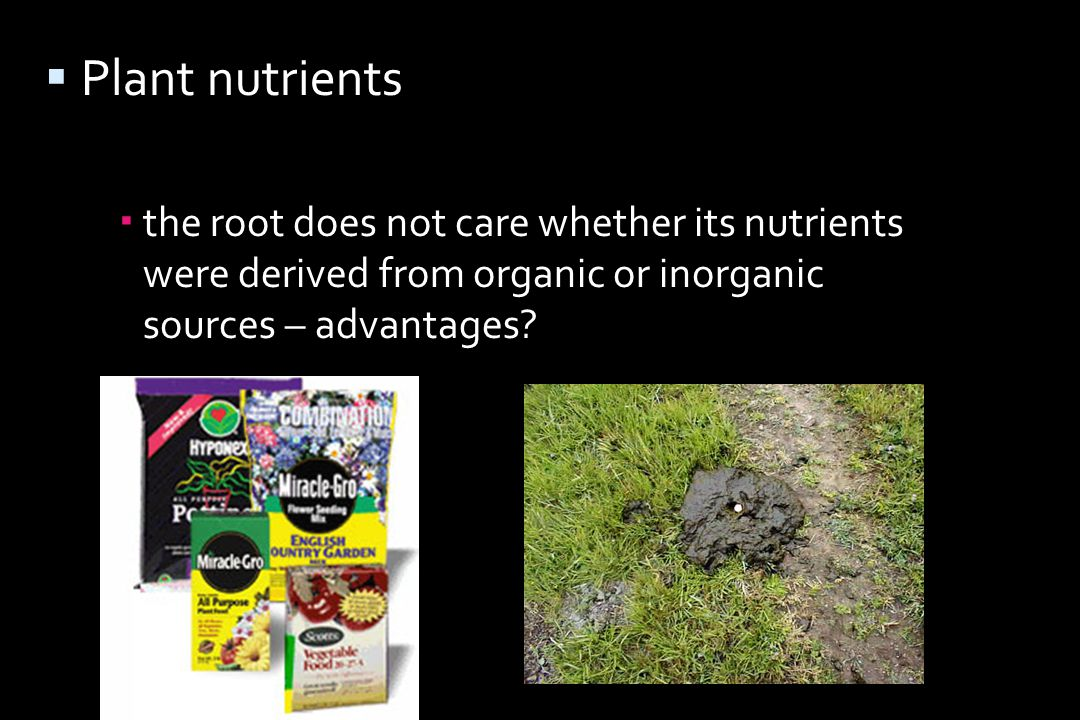  Plant nutrients  the root does not care whether its nutrients were derived from organic or inorganic sources – advantages