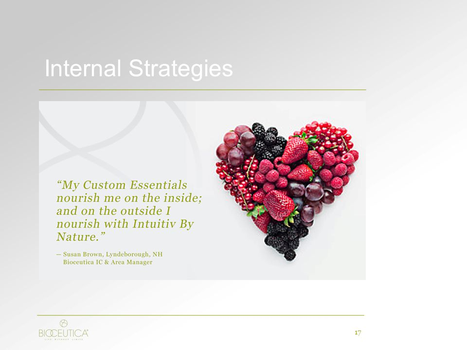 Internal Strategies 17
