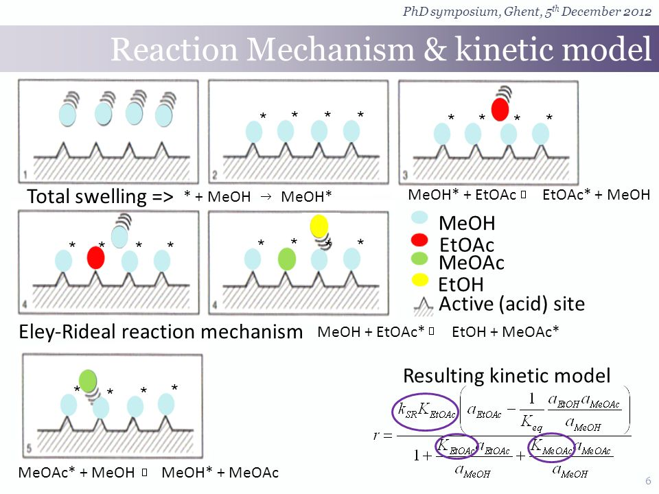 6 Eley-Rideal reaction mechanism MeOH EtOAc EtOH MeOAc * * ** * * * * * * * * *** * * * ** Reaction Mechanism & kinetic model Total swelling => MeOAc* + MeOH MeOH* + MeOAc Resulting kinetic model PhD symposium, Ghent, 5 th December 2012 MeOH* + EtOAc EtOAc* + MeOH * + MeOH MeOH* MeOH + EtOAc* EtOH + MeOAc* Active (acid) site