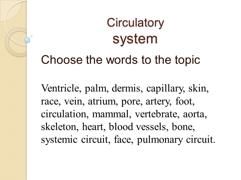 Circulatory system Choose the words to the topic Ventricle, palm, dermis, capillary, skin, race, vein, atrium, pore, artery, foot, circulation, mammal