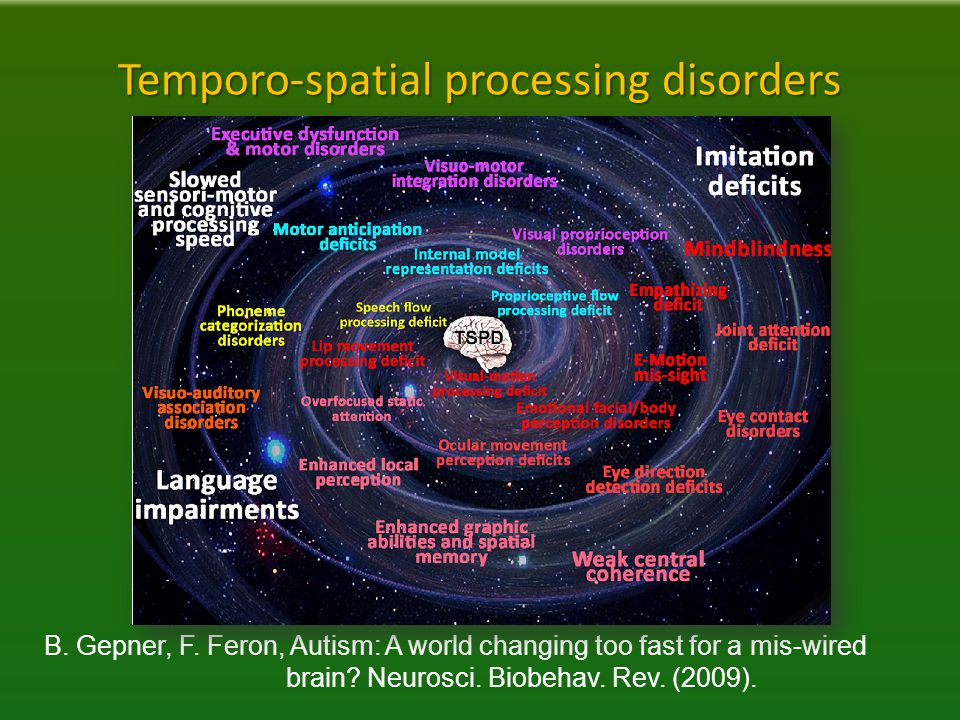 Temporo-spatial processing disorders B. Gepner, F.