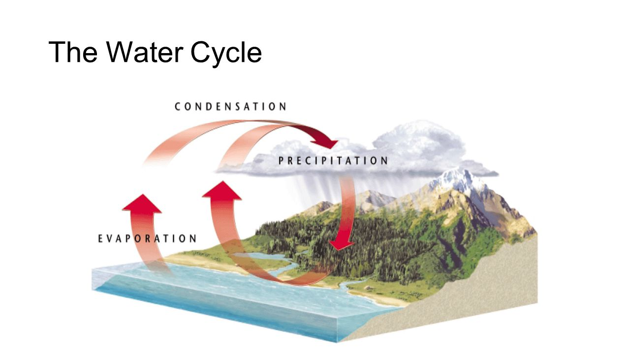 The Recharge Zone To reach an _________________, surface water must travel down through permeable layers of soil and rock.