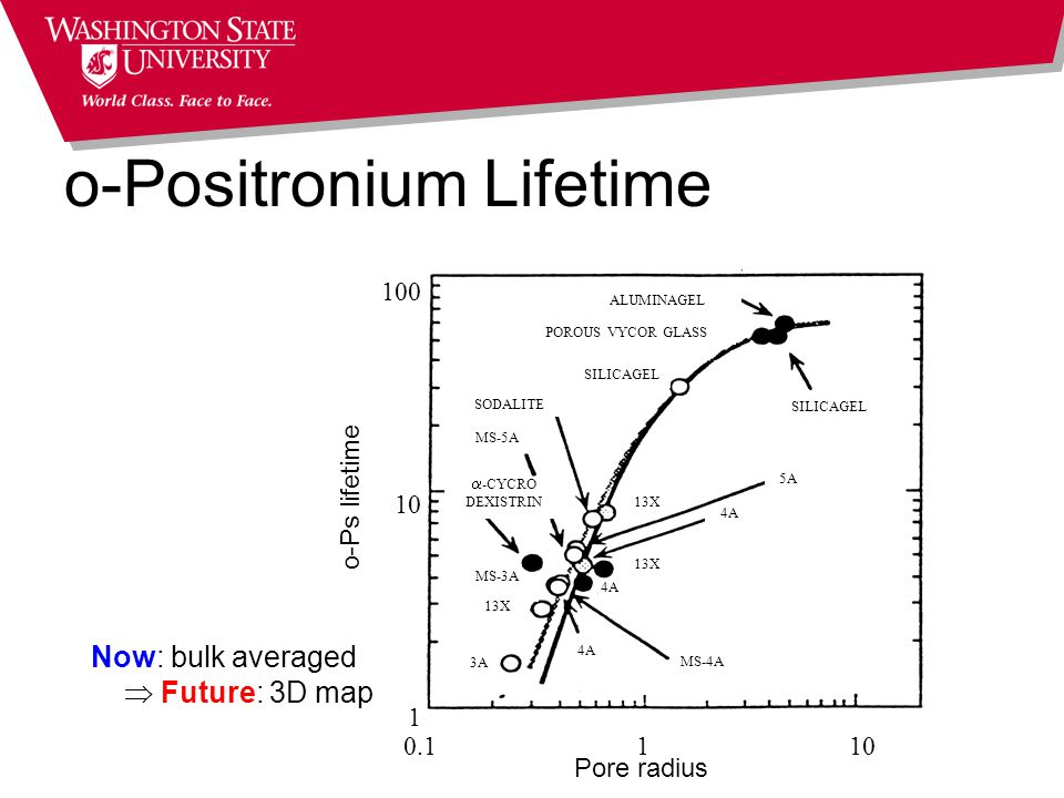 o-Positronium Lifetime 0.1 1 10 1 100 10 Pore radius o-Ps lifetime SILICAGEL ALUMINAGEL POROUS VYCOR GLASS SILICAGEL SODALITE MS-4A MS-5A  -CYCRO DEXISTRIN MS-3A 13X 3A 4A 13X 4A 5A Now: bulk averaged  Future: 3D map